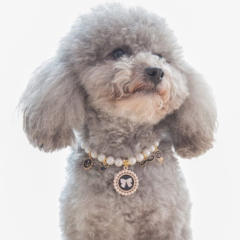 Pearl Necklace Pet Dog Cat Collar Diamond Pet Collars Mascotas Dog Accessories Leashes For Little Dogs Pet Supplies Cachorro