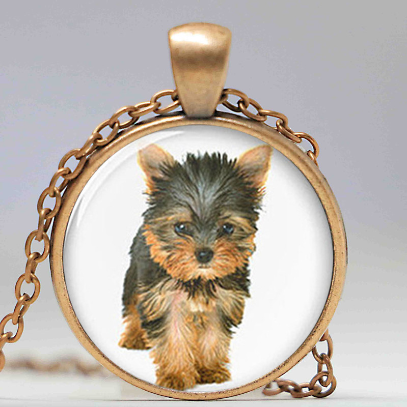 1pcslot yorkie necklace yorkshire terrier cute dog pendant glass 1pcslot yorkie necklace yorkshire terrier cute dog pendant glass photo dog gift in pendant necklaces from jewelry accessories on aliexpress alibaba aloadofball Image collections
