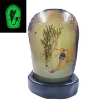 Real Scorpion Accessory Ambers Resin Luminous scorpions Statue Hand ornaments home Decoration