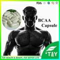 Esporte suplemento BCAA aminoácidos cápsula na venda cápsula cápsula 0 # * 100 pcs