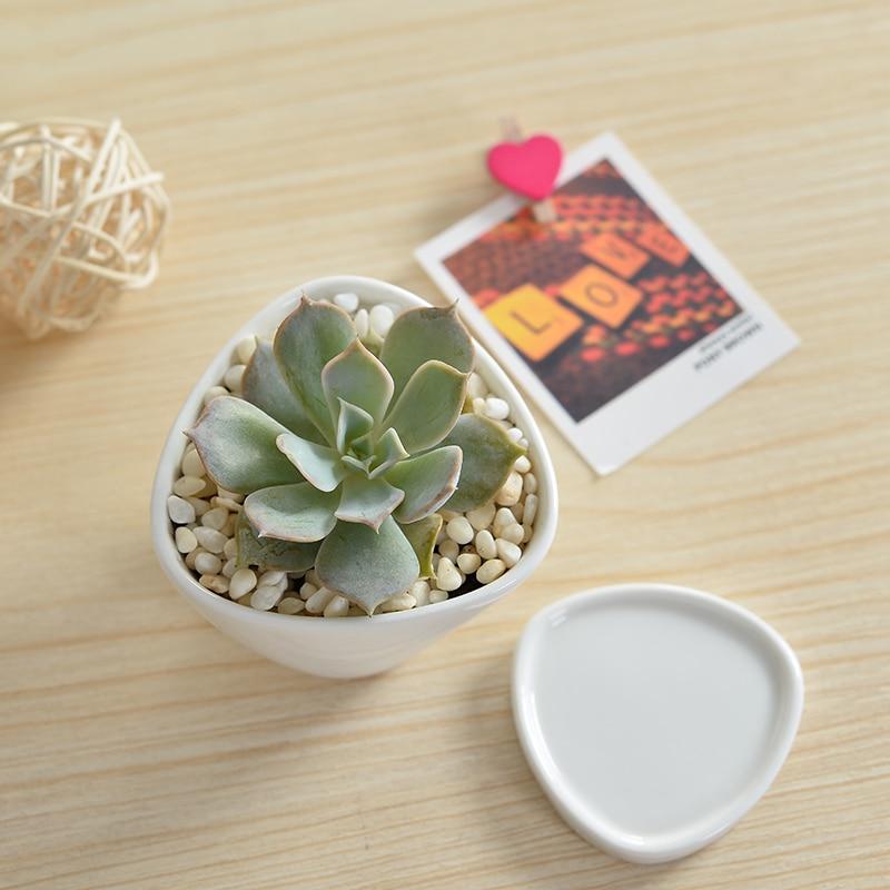 1 Set Geometrie minimalistă Alb ceramică Suculente de plante Pot - Produse de grădină