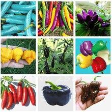 100% Правда 100 Перец Семена Органические Фрукты Овощи Семена Гибрид Чили Семена DIY Главная Сад Горшок
