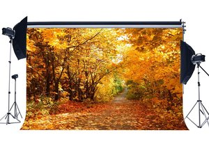 Image 1 - Autumn Backdrop Jungle Forest Trees Backdrops Golden Leaves Nature Outdoor Photography Background