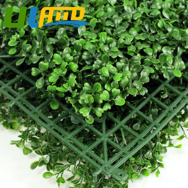 Plantas para vallas jazmn estrellado o jazmn chino es una planta excelente para cubrir vallas o - Plantas para vallas ...