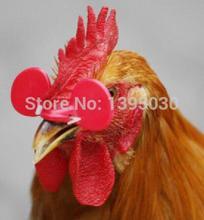 1000шт/много корма для птицы куриные глаза очки скота избежать курица клюют друг друга боевые клюют яйца