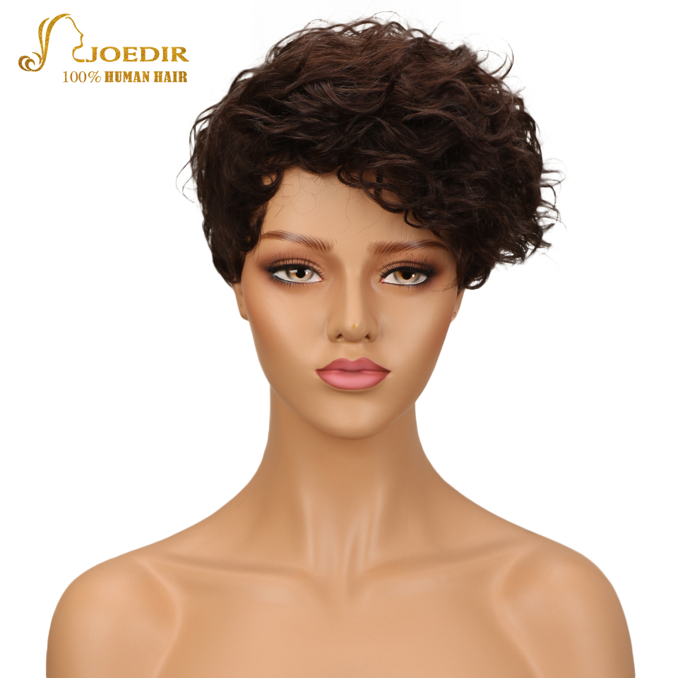 Joedir Hair Wigs For Black Women Indian Wet And Wavy Wig 100% Human Hair Wigs Short Kinky Curly Wigs Color Brown Free Shipping