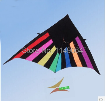 free shipping high quality 2.8m ray shinning delta kite with kite line bird kite weifang chinese kite string power pro line power kite buggying power trike power scooter snow kite buggying