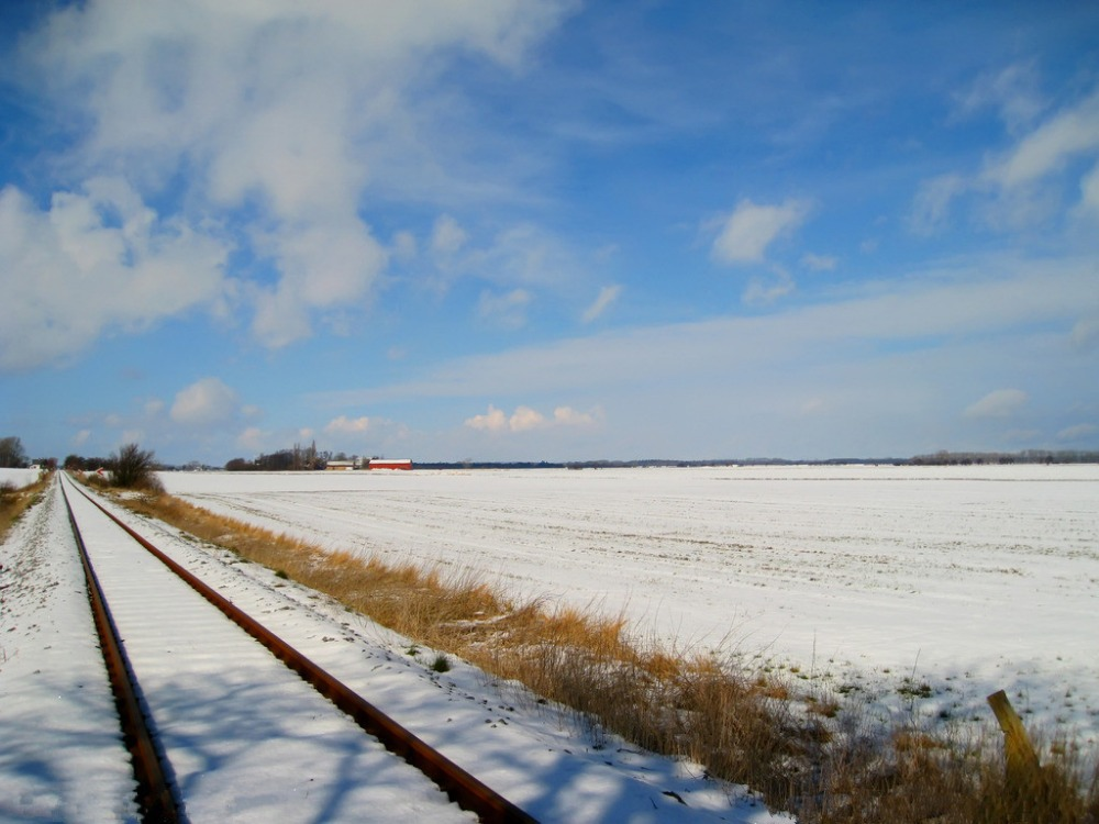 7x5ft Vinyl Custom Railway Theme Photography Backdrops Prop Photo Studio Background NTG-152