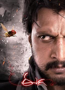 《功夫小蝇》2012年印度喜剧,动作,奇幻电影在线观看