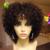 Corto Cabello Humano Pelucas Rizadas Brasileñas Llenas Del Cordón Pelucas de Cabello Humano con el Pelo Del Bebé Sin Cola Del Frente Del Cordón Pelucas de Cabello Humano Negro de Las Mujeres