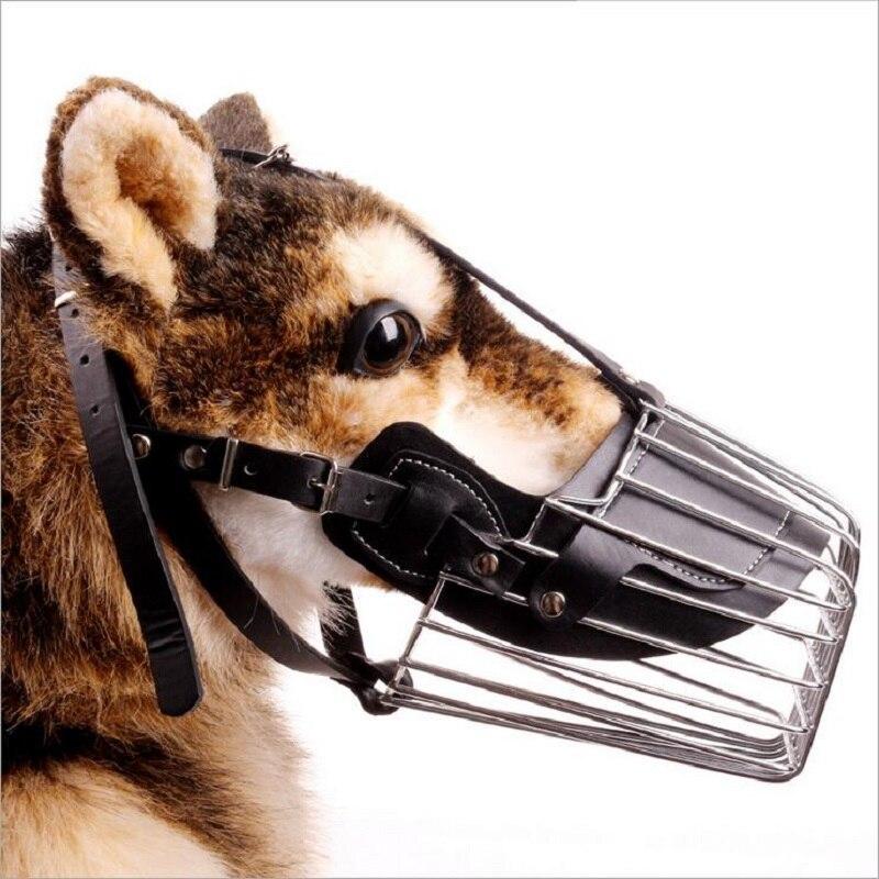 Fantastisch Hund Kauen Drähte Fotos Zeitgenössisch - Elektrische ...