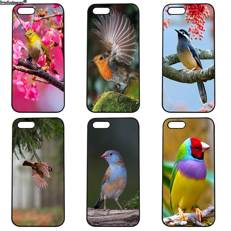 Mobile Phone Case Beautiful Birds Hard Anti-knock Cover Fitted for iphone 8 7 6 6S Plus X 5S 5C 5 SE 4 4S iPod Touch 4 5 6 Shell