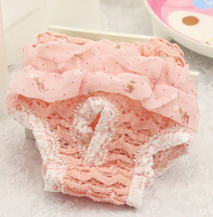 Breathable Lace Pet Dog Menstruation Underwear Small Dog Physiological Pants Girl Female Dog Brief