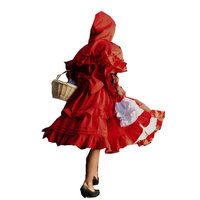 Historical !R 511 Vintage Costumes 1860s Civil War Ball wedding Dress/Gothic Lolita Dress Victorian dresses/Renaissance dress