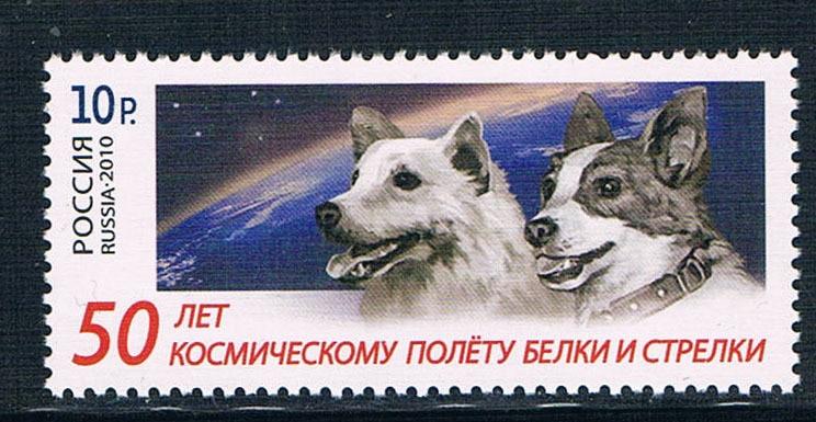 RU1046 Russia 2010 puppies 1 new 1201 slando ru купить скорняжную машинку