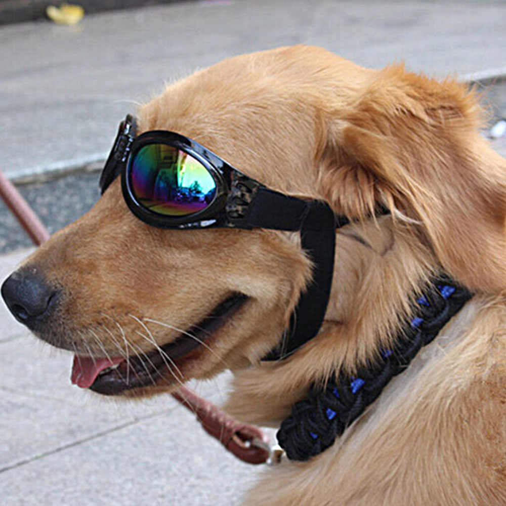 font b Pet b font Dog Adjustable UV Sunglasses Black Eye wear Costume Foldable Sun