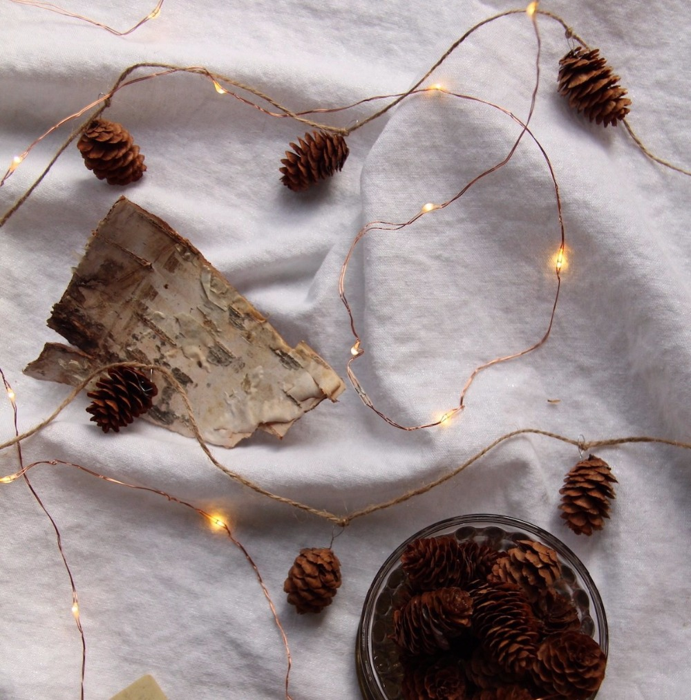 How-to-Make-a-Pinecone-Garland