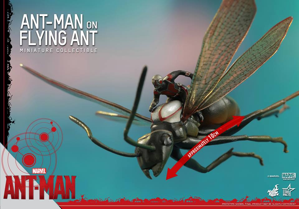 1/6 scale Ant-Man Flying ant Model Super Mini about 5cm .Collectible Model toys gift ant antics