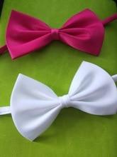 2014 fashionable pet product bow tie/ accessories/ bowknot tie mix color  50pcs/lot