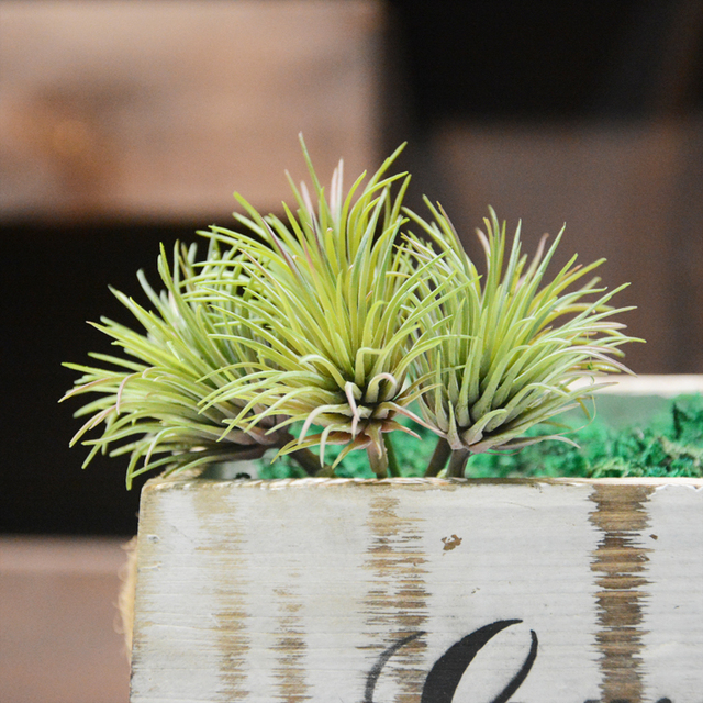 1pc artificial succulents mini air grass fake green plants potted