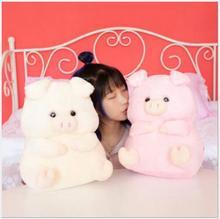 WYZHY New Year Gift Pig Mascot Rainbow Pig Three-in-One Warm Hand Cushion Plush Toy 40cm цена