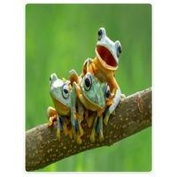 HommomH 60X80 Blanket Throw Comfort Warm Soft Plush Throw For Sofa Cute Frogs Art