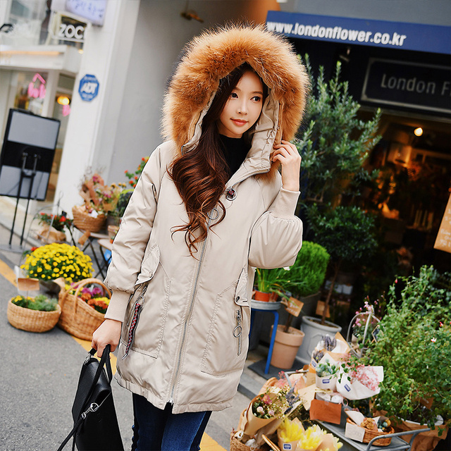 Dabuwawa H line Thick Windproof Warm Hooded Fur Collar 2018 Embroidered Streetwear Long warm Winter Down Coat with Hairy collar