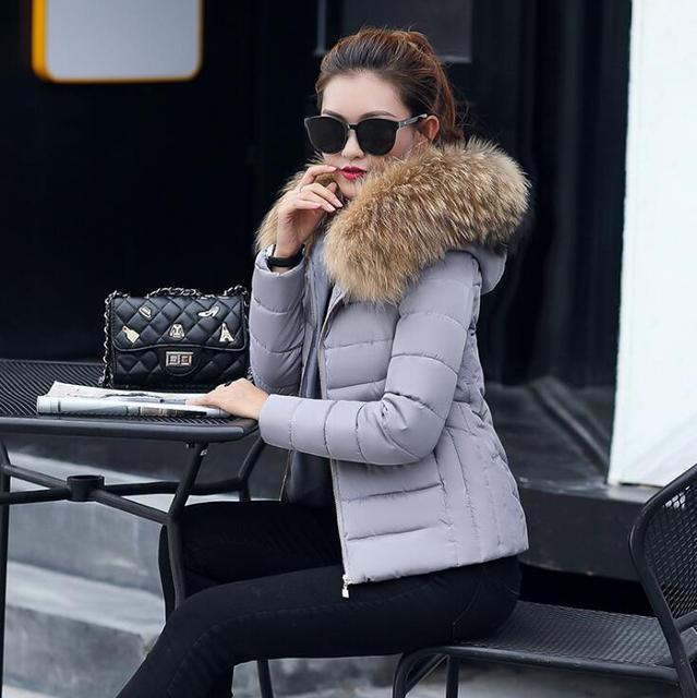 2018 Vrouwelijke Jas Herfst Met Bontkraag Capuchon Katoenen Gewatteerde Winterjas Vrouwen Korte Uitloper Basic Jacket 2