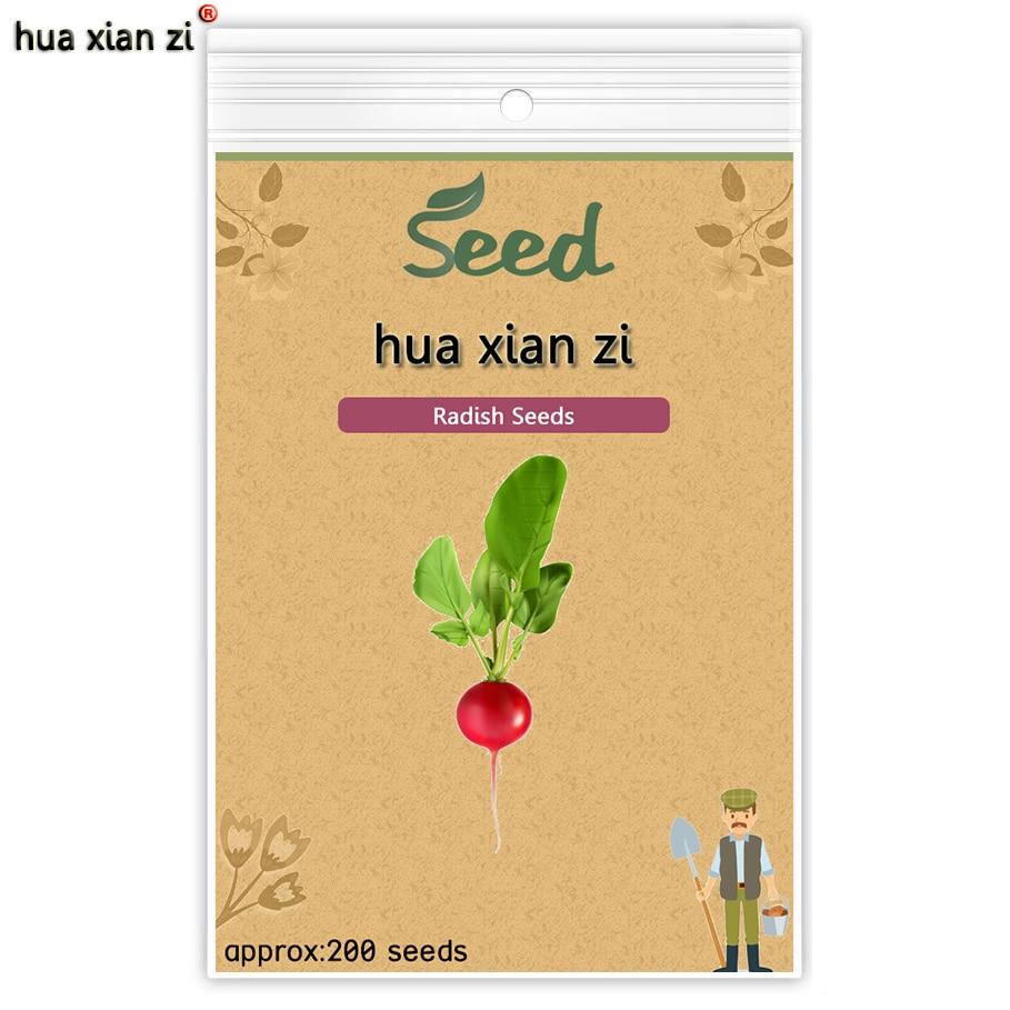 ХУА СЯНЬ ЦЗЫ Вишневый Редька Семена Овощных Семян Daucus Carota Вкусный Сладкий Овощной 200 семян/мешок