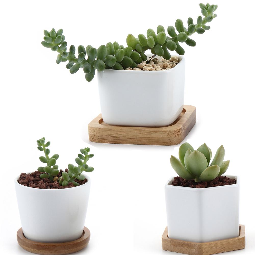 T4U Ceramic Hexagon Succulent Maceta Bonsai Pot Cactus Planter Pots With Free Bamboo Tray For Home Decoration