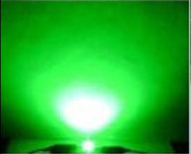 1W 3W Warm Neutral Cool Cold White 6000k Green 530nm Royal Blue 445nm Red 620nm 660nm Full Spectrum LED Bead Light 20mm Star in Light Beads from Lights Lighting