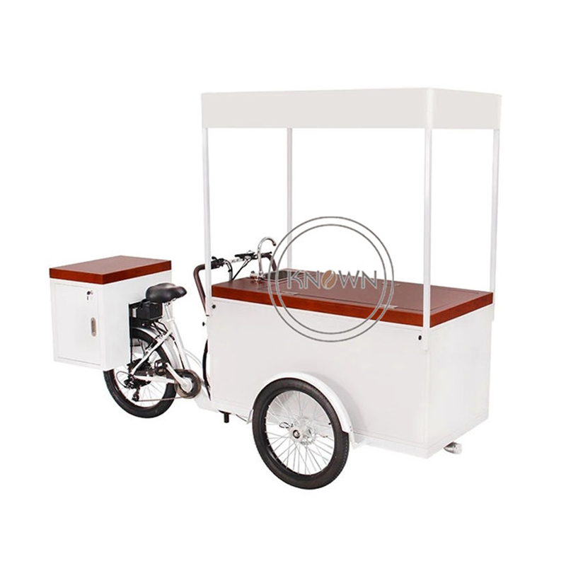 Three wheel 230L mobil cart deliveriy cargo tricycle electric ice cream food e bike for sale