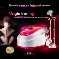 ITAS1216 Double rod iron electric steam hanging machine wholesale household appliance portable laundry garment steamers 4