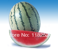 Chinese Tiger 216 F1 Watermelon Seeds fruit seeds (50 SEEDS)