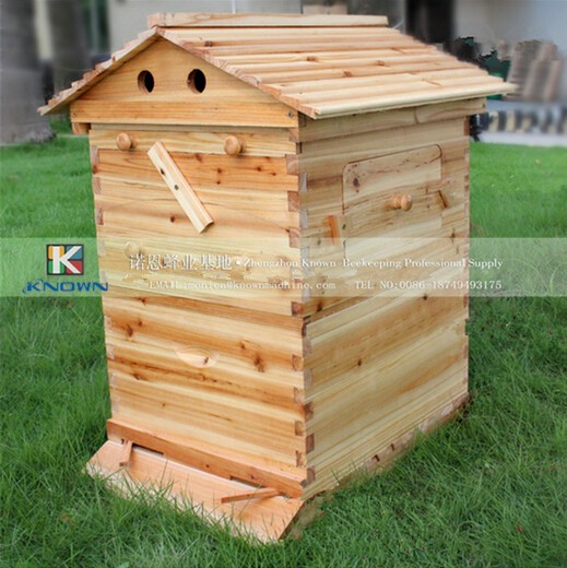 7 pices franes Bee honey self flowing Beehive delivery to Indonesia 6 frames reversible honey extractor for bee keeping