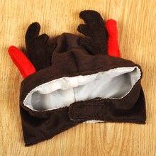 Pet perro suministros peluca cosplay cat accesorios para mascotas chihuahua yorkie sombreros ropa perros divertidos disfraces ropa producto qqm1031
