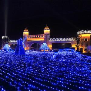 Image 5 - 10M 20M 30M 50M 100M LED מחרוזת פיית אור חג פטיו חג המולד מסיבת חתונת קישוט AC 220 V/110 V חיצוני זר אור