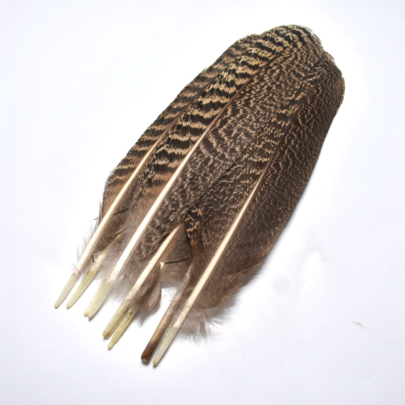 Wholesale10Pcs high quality25 30cm 10 12inch natural owl eagle feathers Pheasant feather DIY Jewelry decoration indian headdress in Feather from Home Garden