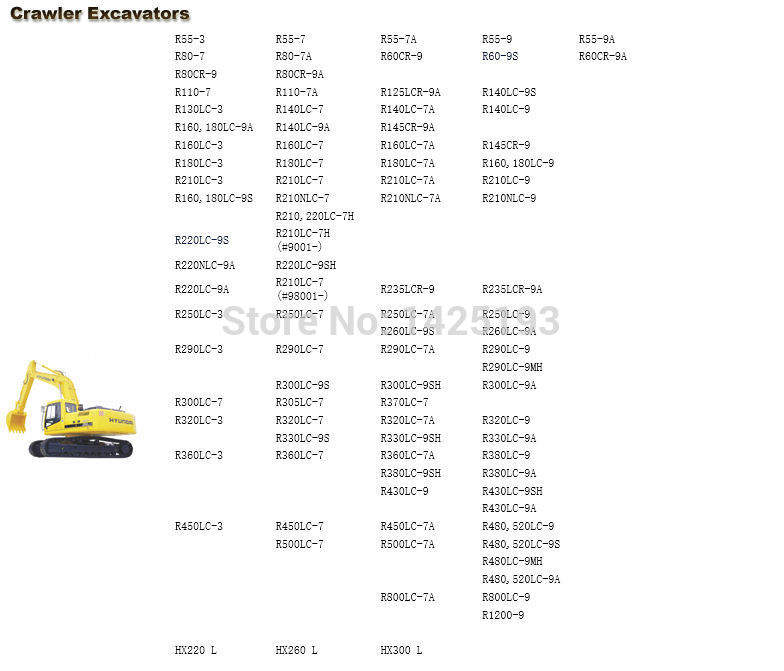 Услуги руководства для гусеничных и колесных экскаваторов для Hyundai