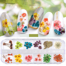 1box Mix Dried  Flowers Leaf Nail Decoration Natural Floral Sticker3D Art Designs Manicure Accessorie