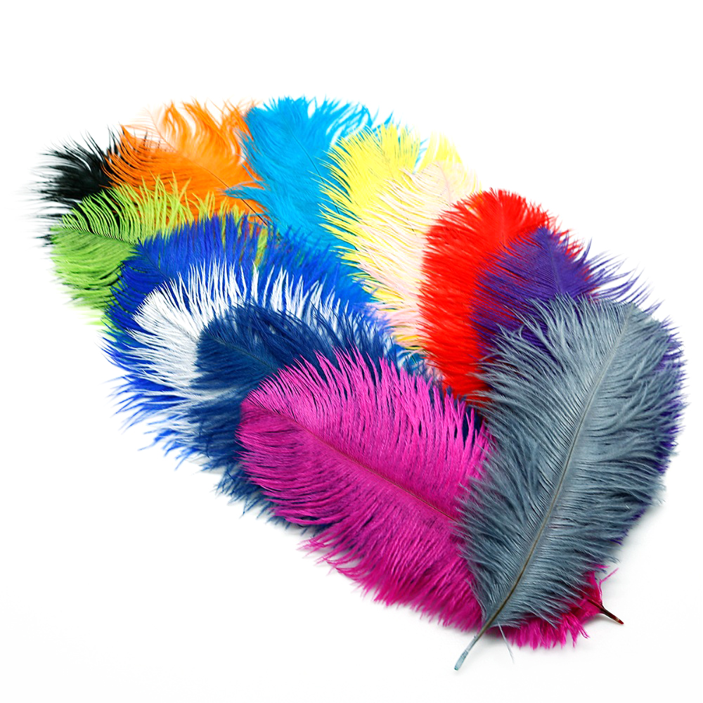 Ostrich Feather 20-25cm(8-10) 5pcsLot Colorful Supplies DIY Jewelry Craft Making & Wedding Party Clothing Decoration
