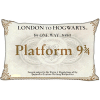 Harry Potter Hogwarts Train Ticket Zippered Pillowcase Pillow Cover 20x30 Inches Birthday Gift For Kids Lover