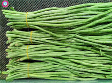 20pcs real cowpea seeds long beans organic vegetable seeds Healthy edible planting for spring farm supplies High germination rat