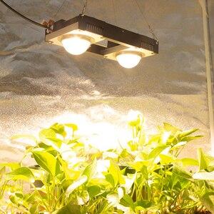 Image 2 - Cxb3590 cob led crescer espectro completo de luz 100w 200 cidadão 1212 led planta crescer lâmpada para estufas tenda interior planta hidropônica