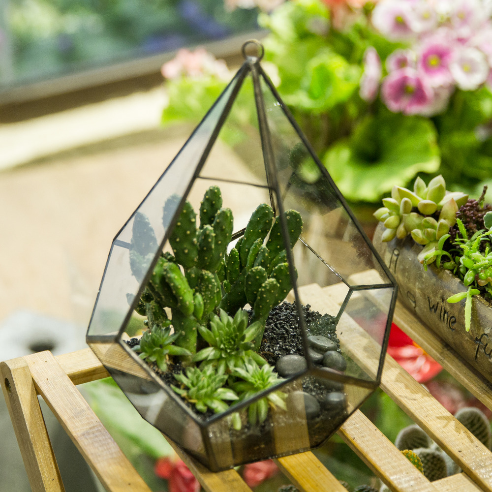Artistik Moden Hanging Kaca Jelas Lima Permukaan Pot Bunga Berlian Pakis Moss Planter Geometric Terrarium dengan Loop