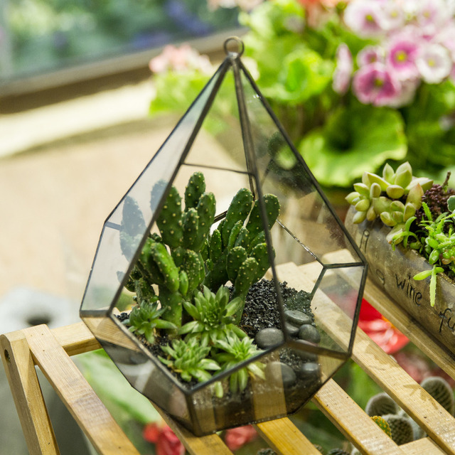 Modern Artistic Hanging Clear Glass Five-surfaces Diamond Flower Pots Succulent Fern Moss Planter Geometric Terrarium with Loop