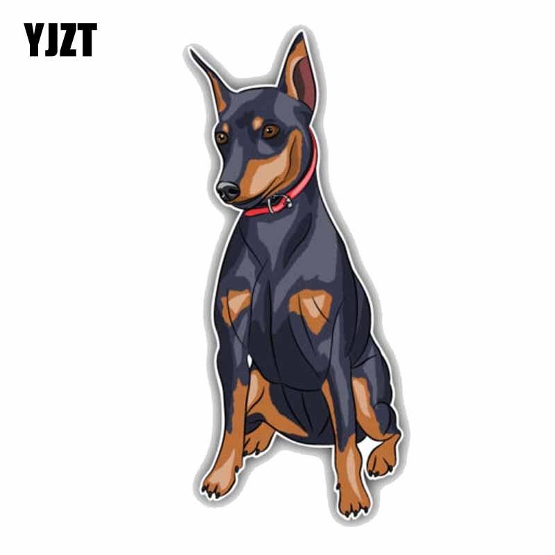 YJZT 7.6CMx17CM Miniature Pinscher Breed Dog Car Decal C1-9039