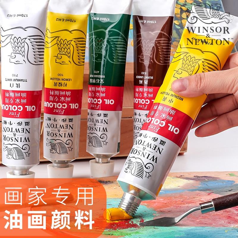 Pintura al óleo Color pigmento pinturas al óleo suministros de arte para artista pintura material herramientas lienzo 170 ml/tubo 12 colores