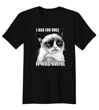 Grumpy Kitten I Had Fun Once It Was Awful Meme Funny T-Shirt Tee Short Sleeves Cotton T-Shirt Fashion O-Neck T Shirt Homme