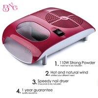Professional Nail Art Supplier BeautyGaGa High Quality Red 220V EU Plug Hot Cold Air Dryer Fan
